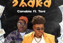 Photo of Canabia – Shaka ft. Teni