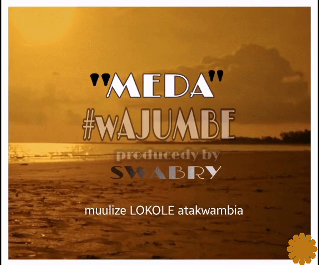 Meda Wajumbe artwork 1