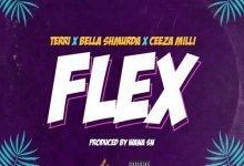 Photo of Terri – Flex ft Bella Shmurda, Ceeza Milli