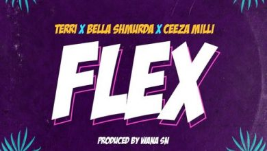 Photo of Terri – Flex ft Bella Shmurda, Ceeza Milli
