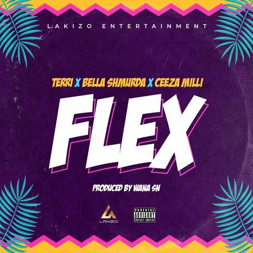 Terri Flex ft Bella Shmurda Ceeza Milli