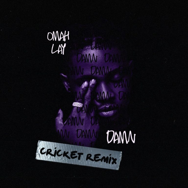 Omah Lay Damn Cricket Remix 768x768 1