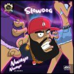Slowdog Nwayo Nwayo artwork