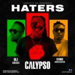 Calypso Haters 1