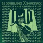 DJ Consequence Amapiano Is A Vibe 2