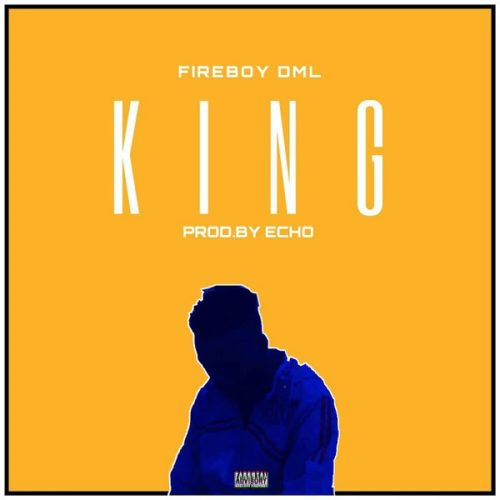 Fireboy DML King Video mp3 image