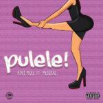 Kofi Mole ft Medikal – Pulele