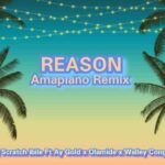 DJ Scratch Ibile ft. Ay Gold x Olamide x Walley Conga – Reason Amapiano Remix