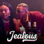 Alikiba Jealous Video
