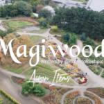 magnito – magiwood ft bovi